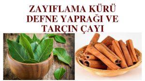 kilo vermek için çay - zayıflama çayı -defne yaprağı ile zayıflayanlar - defne yaprağı çayı zayıflatırmı - defne yaprağı ile zayıflama - defne yaprağı zayıflamak için nasıl kullanılır