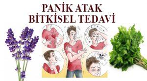 Panik atak tedavisi bitkisel - panik atağa ne iyi gelir ,panik atak tedavisi evde ,panik atak nasıl geçer ,panik atak hastalığı nasıl geçer ,panik atak tedavisi bitkisel çözüm ,panik atak kesin çözüm ,panik atağa iyi gelen bitkiler ,panik ataktan nasıl kurtulurum