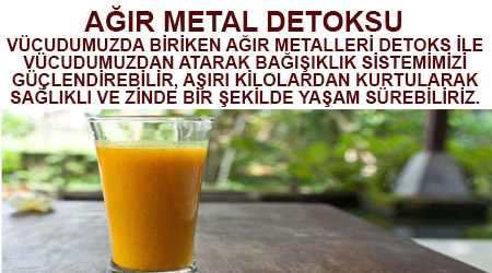 Ağır metal detoksu